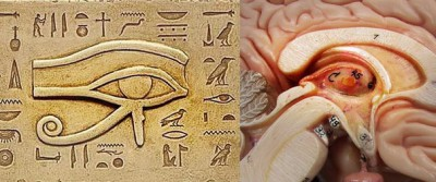 pineal and egypt