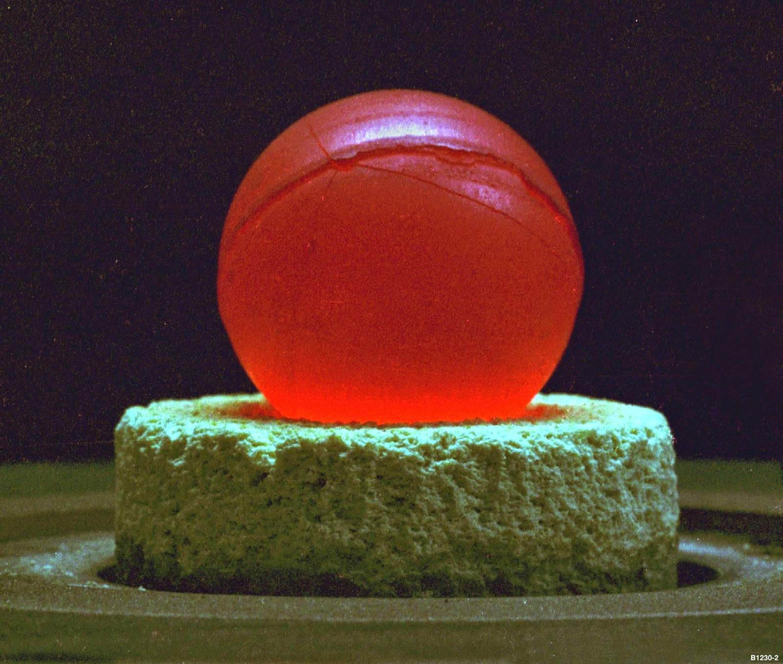 In Profile : the plutonium deception