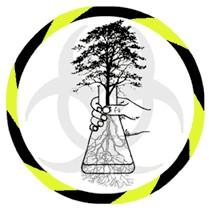 Genetically Engineered Trees