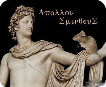 Apollo Smintheus Mouse