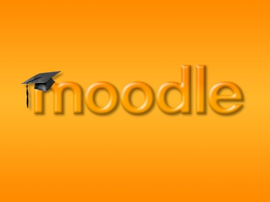 In Profile : Moodle, the corporate schools  Virtual Environment