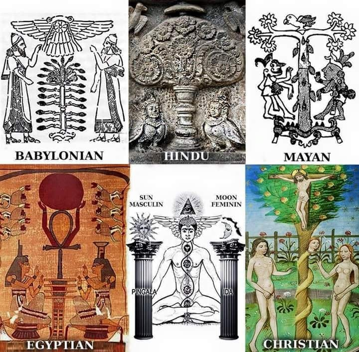 What is the obsession with ancient Egypt by the priesthood? Seeking the reptile